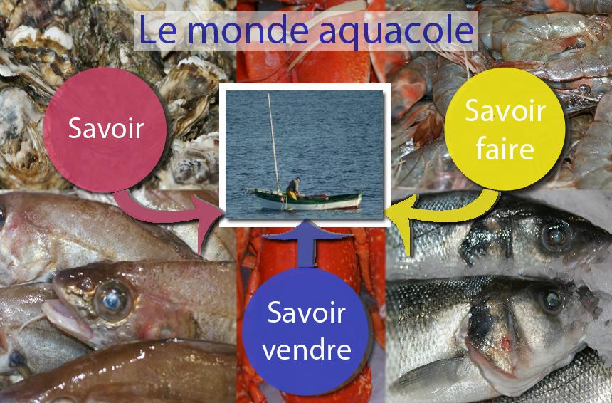 Produits de la mer poissons coquillages crustac s - Referentiel cap cuisine ...
